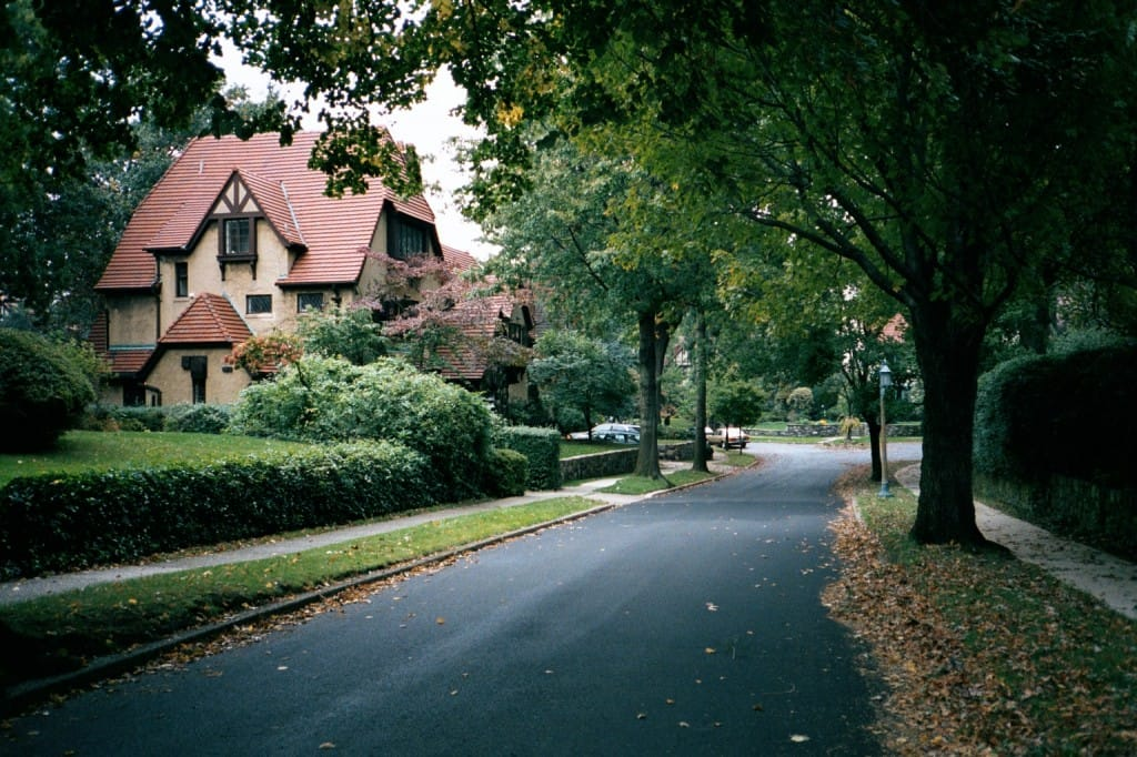 Queens Residential Tree Services