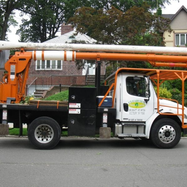 clearview tree truck
